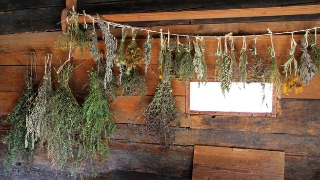 Kräutersträuße als Duftgirlanden aufhängen
