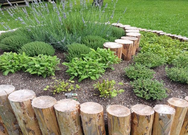 Eine Kräuterschnecke als besonderes Dekoelement im Garten.