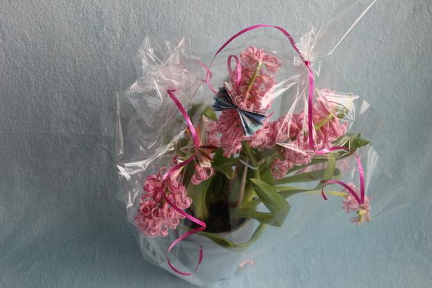 Verpacken Sie die Blume mit Folie.