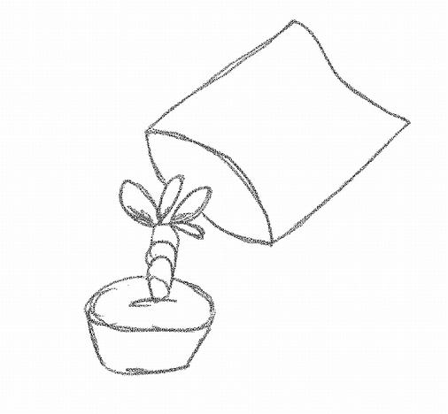 Tüte über Pflanze stülpen.