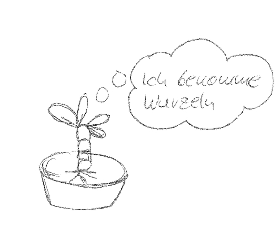 Pflanze wurzelt.