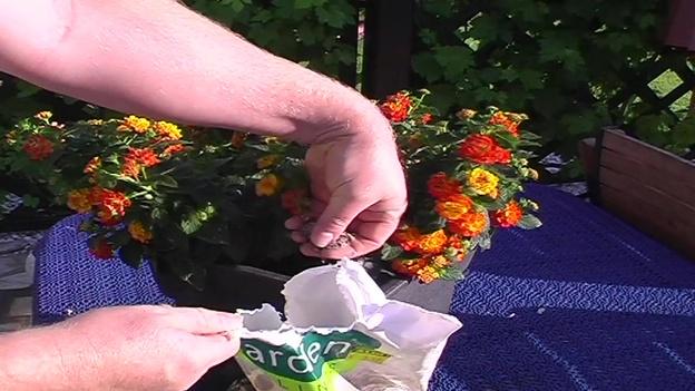 Für Kübelpflanzen bedingt geeignet