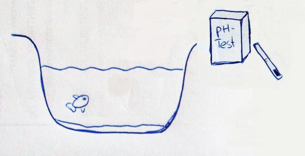 Den pH-Wert testen.