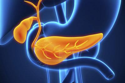 Bauchspeicheldrüse und gestörte Gallenproduktion sind die Hauptverdächtigen bei Fettstuhl.