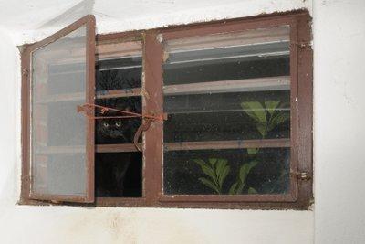 Sichern Sie Ihre Kellerfenster gegen Einbrecher.