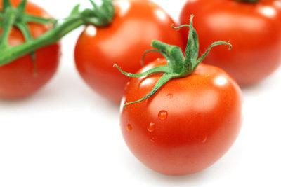 Leckere Tomaten im Gewächshaus selbst züchten.