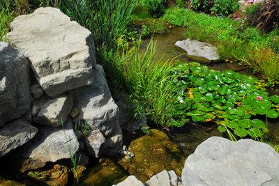 Eine Pumpe hält den Teich sauber.