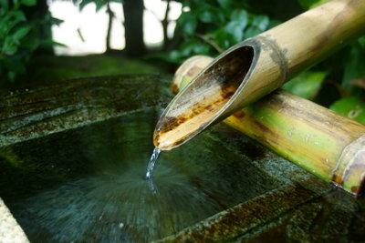 """Bambus ist """"von Natur aus"""" wasserfest!"""
