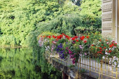 Balkonblumenkästen sorgen für schöne Farben.