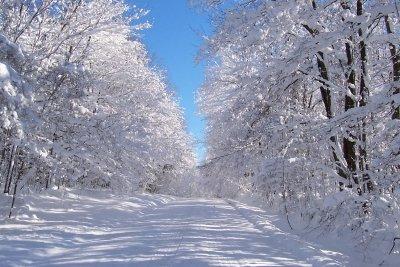 Streusalz macht vereiste Winterstraßen wieder befahrbar.