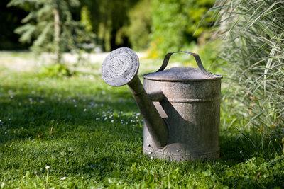 Bepflanzte Gießkannen als Blickfang