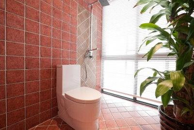 Ein Toilettenbecken können Sie selber montieren.