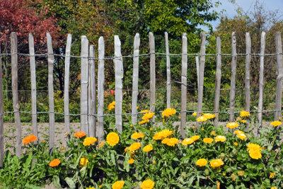 Ein Staketenzaun schmückt den Garten.