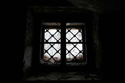 Verschönern Sie die Aussicht durchs Kellerfenster!