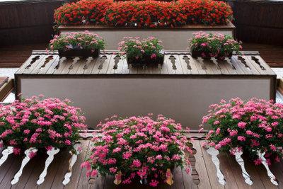Blumenkästen am Balkon sehen schön aus.