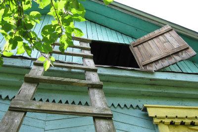 Holzböcke nisten sich gern in Dachböden ein.