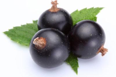 Aus selbst geernteten Früchten Beerenweine herstellen