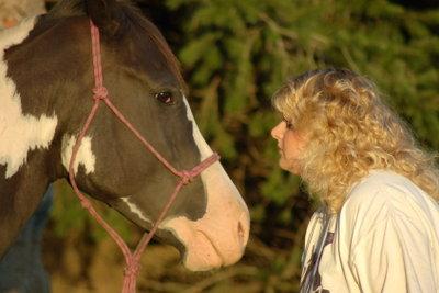 Pferdeflüsterer: Tierberufe bilden eine solide Grundlage.