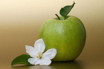 Ein Apfel bricht das Heilfasten.
