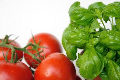 Frische Tomaten sind gesund und lecker.