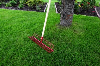 Ein schöner Rasen will gepflegt sein.