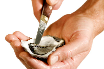 So liegt die Auster in der Hand.