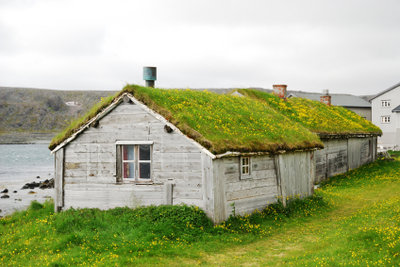 Verschönern Sie Ihr Haus mit Dachbegrünung.