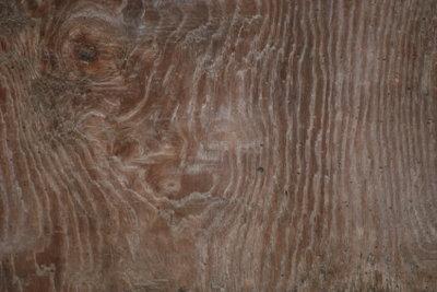 Holztüren sollten richtig gepflegt werden.