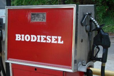 Nicht jedes Fahrzeug kann Biodiesel tanken.