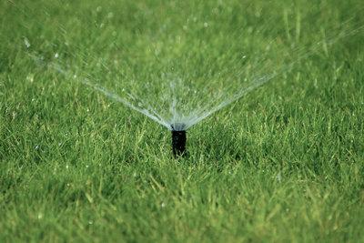 Verlegen Sie Bewässerungsanlagen selber.