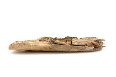 Treibhölzer bilden eine wunderschöne Deko-Laterne.