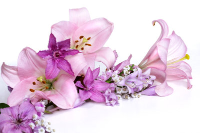 Lilien sind typische Trauerblumen.
