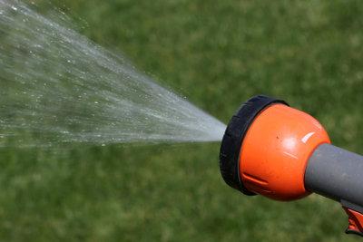 Wasser bedeutet Leben, auch im Garten.
