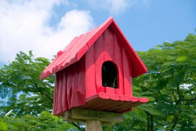 Ein Vogelhaus können Sie gut gemeinsam mit Kindern bauen.