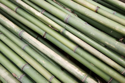 Bambus ist ein natürliches Material.