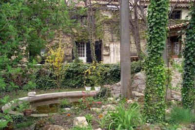 Grüne Wände verschönern Haus und Garten.