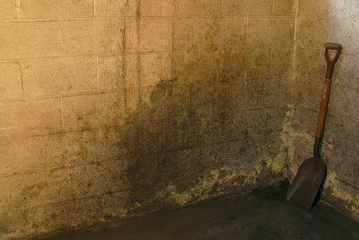 Keller müssen nicht feucht sein.