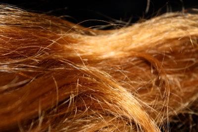 Tönen blondierte haare mittelblond Haare tönen:
