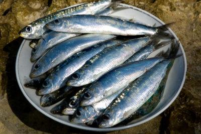 Fisch ist gesund und schmeckt.