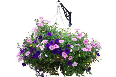 Bauen Sie Dekorationen für den Garten.