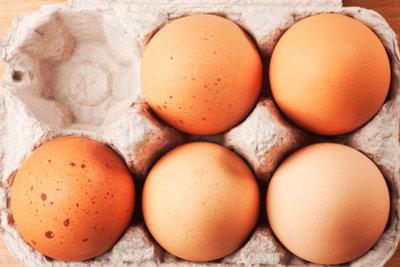 Vollei ist eine Masse aus Eiern