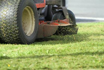 Nur kurzes Gras kann man mulchen.