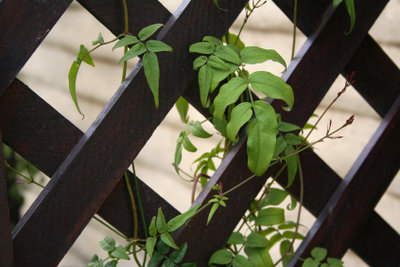 Scherengitter aus Holz sind vielseitig verwendbar.