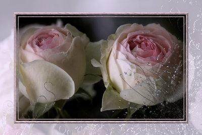 Der 20. Hochzeitstag gehört romantisch gefeiert.