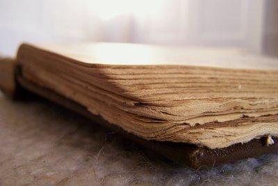 Stockflecken sind häufig auf alten Büchern.