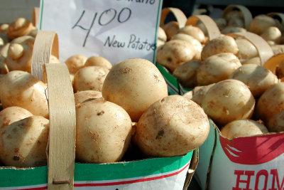 Kartoffeln sind vielseitig und lecker.