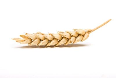 Gesundes Getreide ist Grundlage für Veggie-Patties.