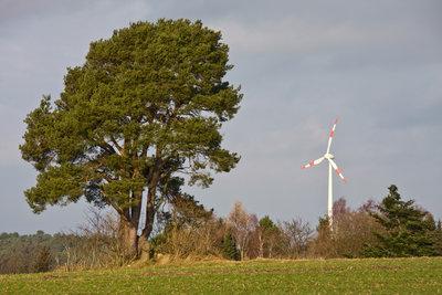 Windkraftanlage sichert den Strombedarf eines Haushaltes.