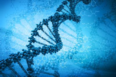 Den DNA-Aufbau mit Eselsbrücken erlernen