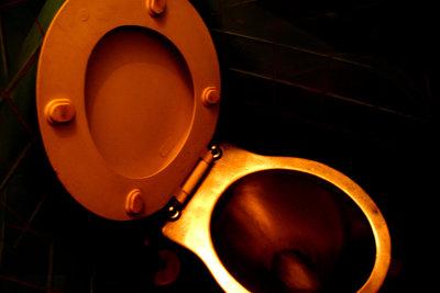 WC-Brillen müssen richtig befestigt werden